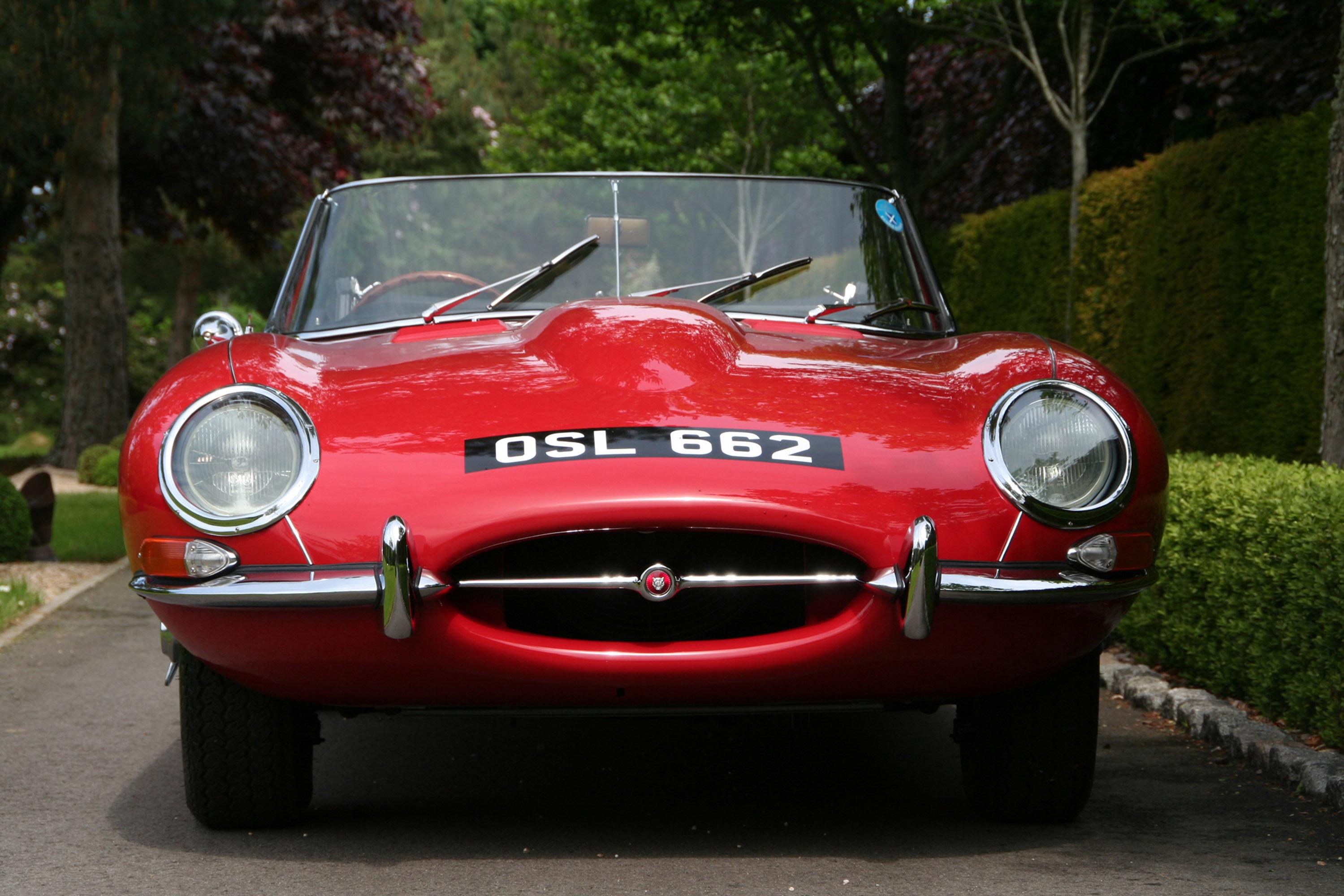 jaguar - фотография №1