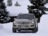 2006 Mercedes-Benz ML500