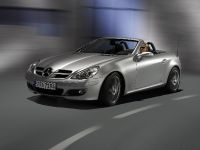 2007 Mercedes-Benz SLK Edition 10