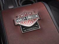 2010 Ford Harley-Davidson F-150