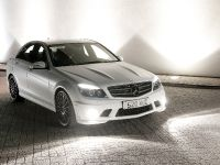 2010 Mercedes-Benz DR520