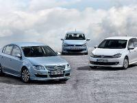 2010 Volkswagen BlueMotion range