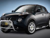 2011 Cobra N+ Nissan Juke
