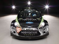 2011 Ford Racing Fiesta