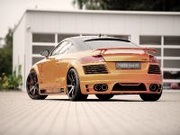 2011 Rieger Audi TT 8J