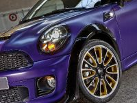 2012 Franca Sozzani MINI Roadster