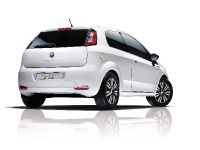 2014 Fiat Punto Young
