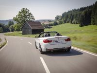 2014 KW BMW F33 Convertible