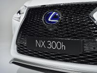 2014 Lexus NX 300h Sports Luxury