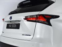 2014 Lexus NX 300h Sports Luxury