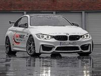 2014 Lightweight BMW M4