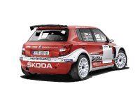 2014 Skoda Fabia Super 2000