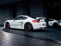 2014 Techart Porsche Cayman