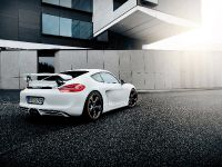2014 Techart Porsche Cayman