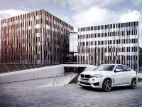 2015 AC Schnitzer BMW X6 M