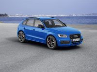 2015 Audi SQ5 TDI Plus