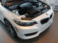 2015 BMW 2-Series 228i Coupe Track Handling Package