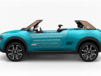2015 Citroen Cactus M Concept