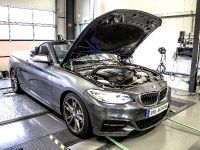 2015 DTE-Systems BMW M235i
