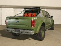 2015 Ford F-150 Halo Sandcat