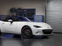 2015 Mazda MX-5 Accessories Design Concept