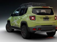 2015 Mopar Jeep Renegade Trailhawk