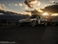 2015 SS Customs Tesla Model S TeslaVets