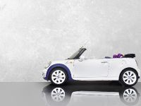 2015 Vilner MINI One Cabrio