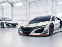 2016 Acura NSX GT3 Race Car