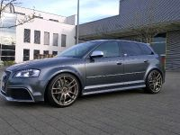 2016 Barracuda Racing Audi RS3 8P