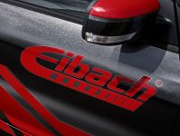 2016 Eibach Ford Focus RS
