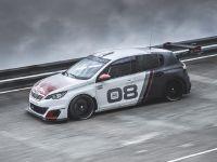 2016 Peugeot 308 Racing Cup