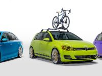 2016 Volkswagen Enthusiast Vehicle Fleet