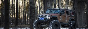 2017 Vilner Jeep Wrangler Hunting Unlimited