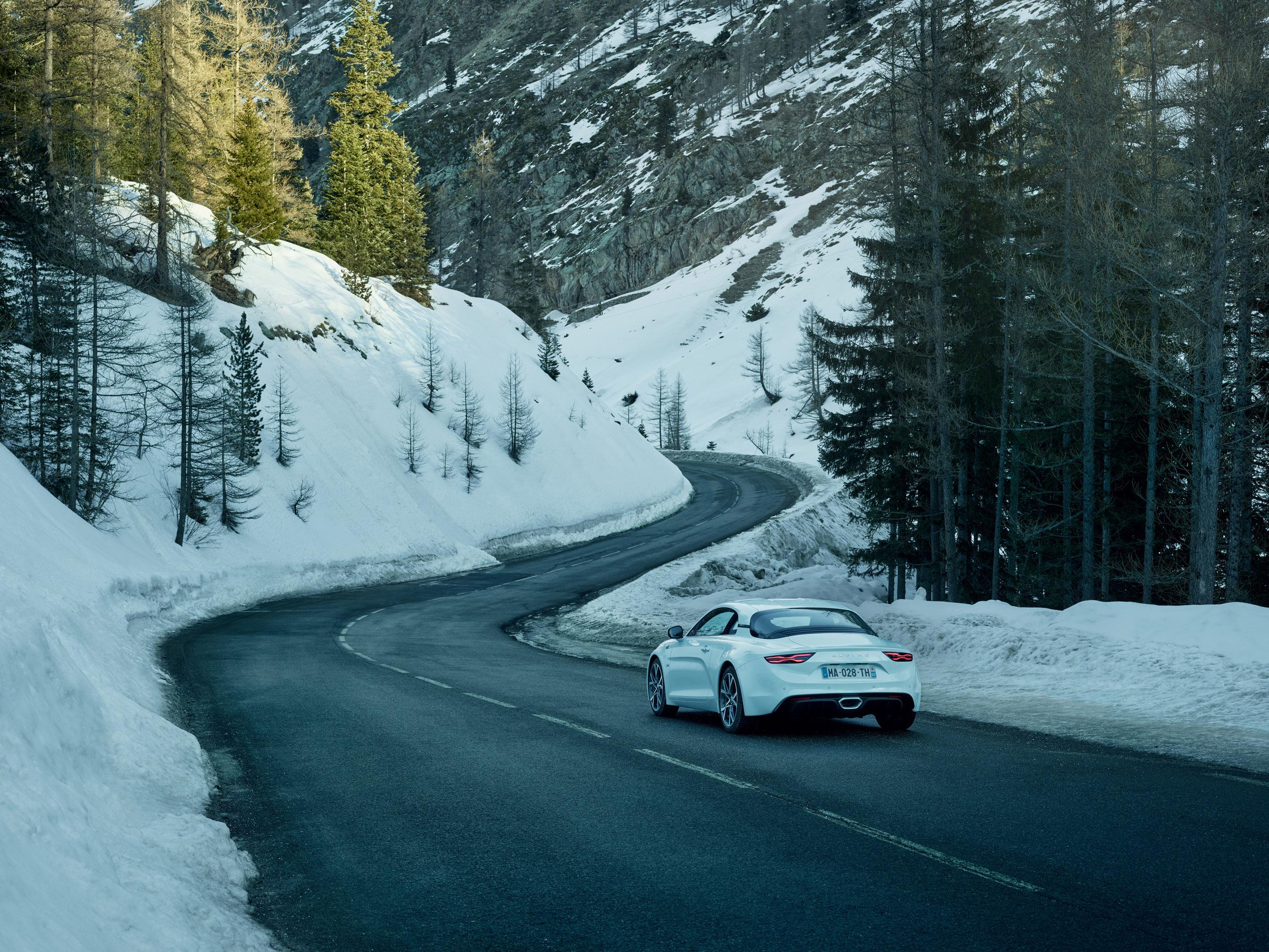 alpina - фотография №4