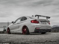 2018 Z-Performance BMW 235i