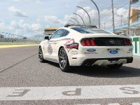 50-Year Limited Edition 2015 Ford Mustang