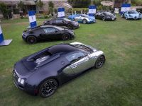 All Bugatti Veyron Legend Editions