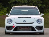 Andretti Rallycross Volkswagen Beetle GRC