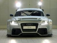thumbs Audi TT RS DTM