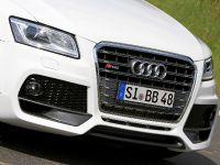 BB Audi SQ5 TDI