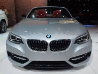 BMW 228i Convertible Los Angeles 2014