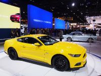Ford Mustang Chicago 2014