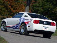 2008 Cobra Jet Ford Mustang