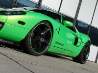 Geiger HP790 Ford GT