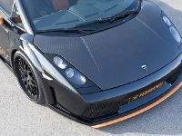 Genuine Carbon Lamborghini Gallardo