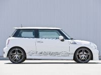 HAMANN MINI with HM EVO