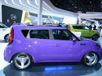 Kia Soul Chicago 2014