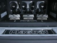 Magnat Ford F-150 show truck