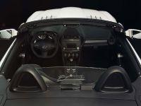 Piecha Design Mercedes-Benz SLK R171 Final Performance RS Edition